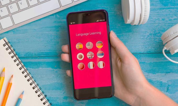 Бизнес-план стартапа — Мобильное приложение для изучения иностранных языков